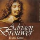 Adriaen Brouwer Dark Gold