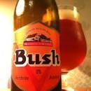 Bush Amber